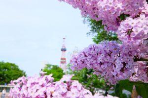 北海道春天穿搭
