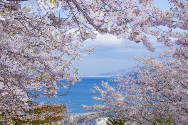 北海道春天