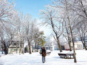 北海道日本旅遊