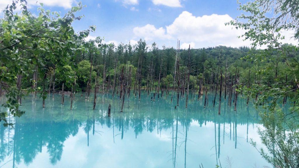 北海道清池